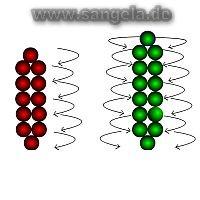 http://www.sangela.de/biser/blumen1.jpg